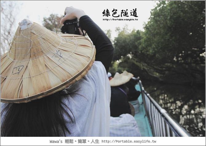 四草綠色隧道。台江國家公園