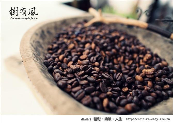 樹有風。藝妓咖啡。台南咖啡下午茶