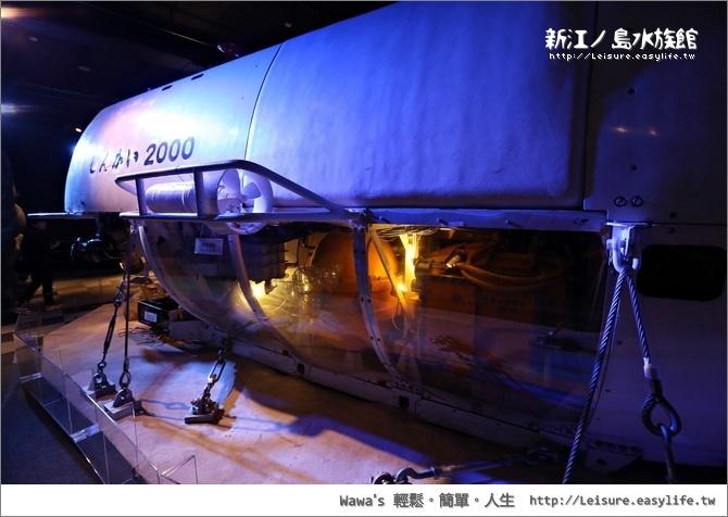 新江ノ島水族館。日本江之島旅遊、藤澤旅遊