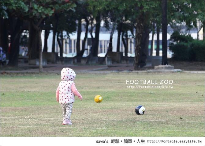 FOOTBALL ZOO 日本專業手工縫製兒童足球