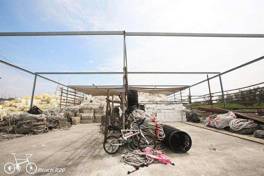 單車 漁光島 Reach R20