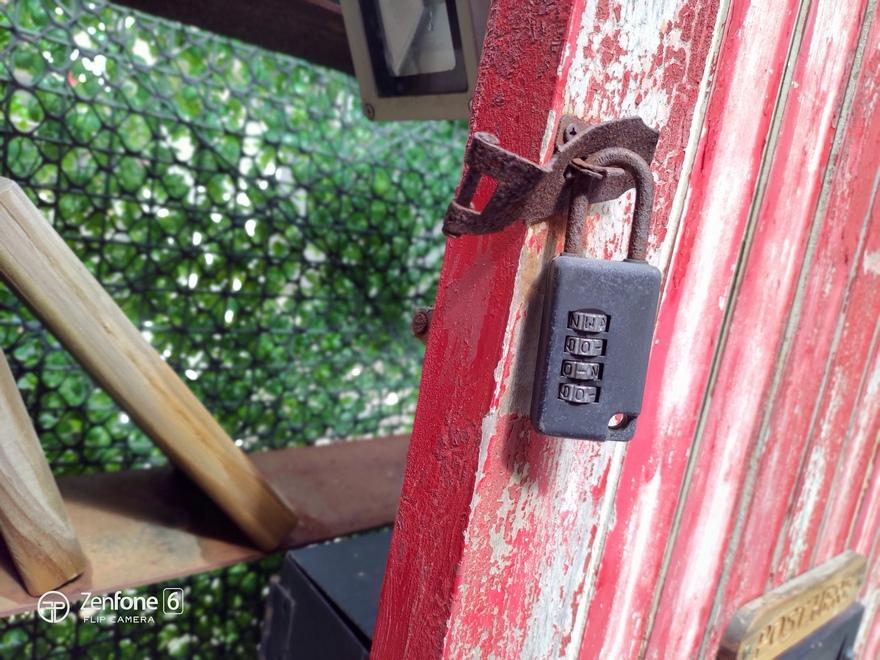 ASUS ZenFone 6 相機白天拍照實測