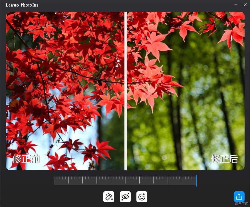 Leawo PhotoIns 照片 AI 智能處理工具