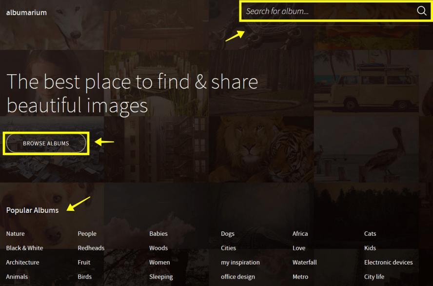 Albumarium 擁有千百種主題的免費高畫質圖庫,免註冊又可輕鬆下載!