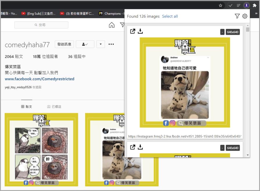 Imageye 強大的一鍵下載所有圖片工具!支援所有網站包括 IG 以及 FB都能使用(Chrome 擴充功能)