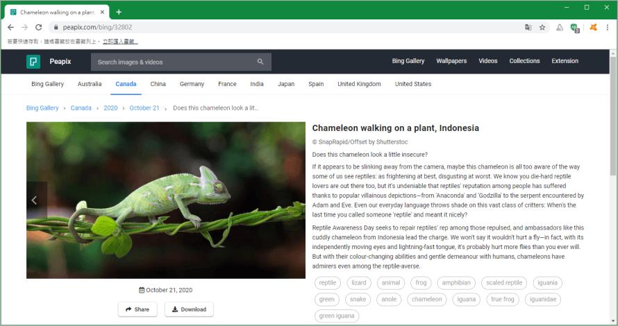 BingWallpaper 微軟自動更換桌布軟體,讓你每天都能擁有不同桌布樣貌!