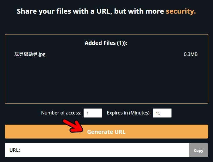 Disposable URL 免費線上一次性傳檔工具,點開網址即可領取!