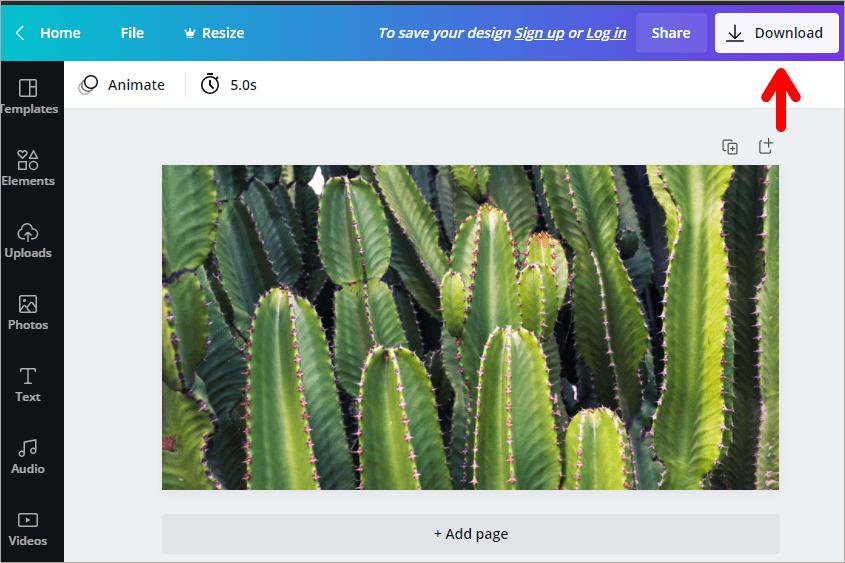 Stock Photos by Canva 百萬張免費高畫質圖庫!支援照片裁切與 JPG、PNG 格式