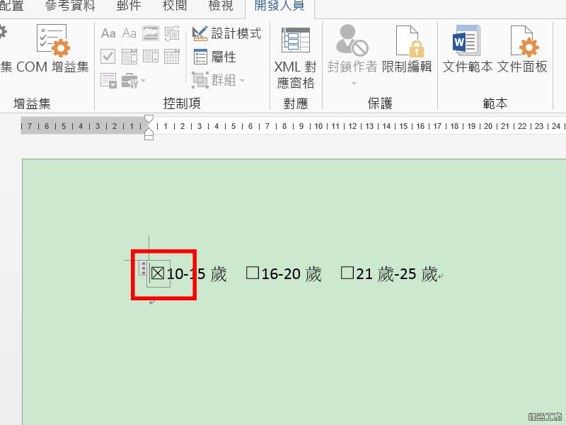 WORD 開發人員加入可勾選的核選方塊