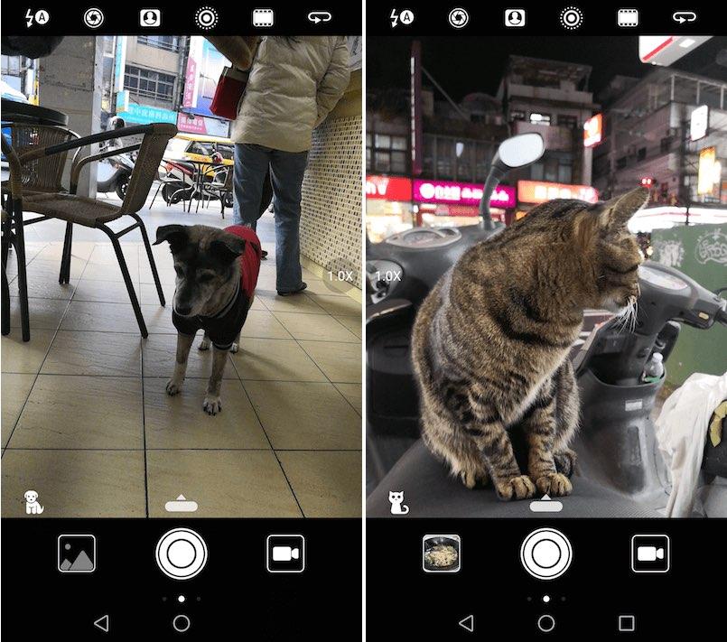 Mate 10 相機 AI 智能場景 13種模式 狗 貓 植物 花 食物