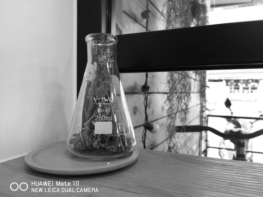 Mate 10 相機 實拍 測試 黑白 單色 3D全景 功能 人像模式 虛化背景 景深