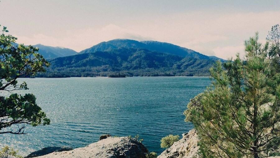自然 湖 海 樹 山 水 植物