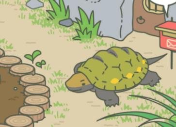 旅行青蛙 烏龜