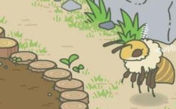 旅行青蛙 蜜蜂