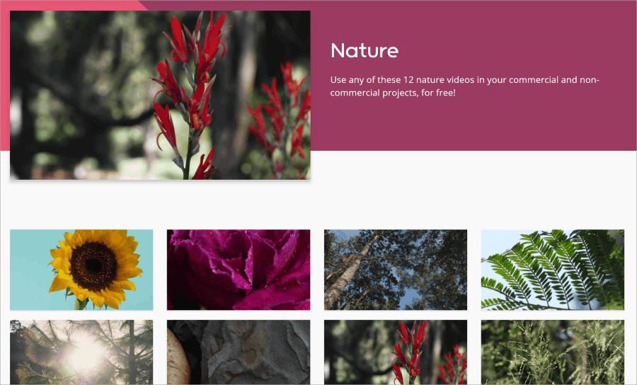 可商用自然影片素材下載