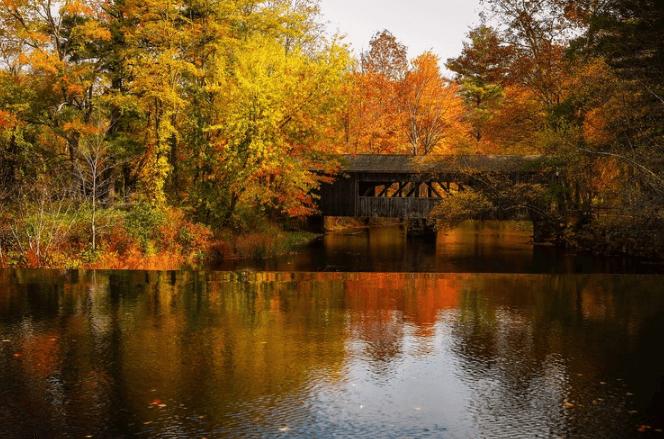秋天照片下載