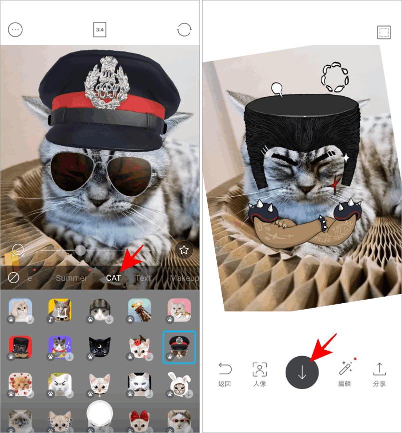 貓臉相機app