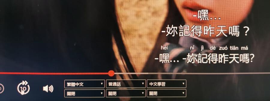 Netflix中日字幕