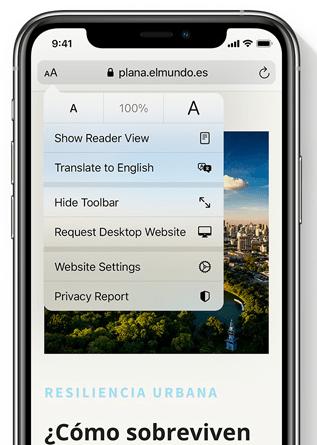 iOS 14 Safari 翻譯