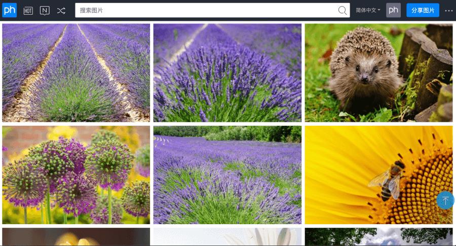 植物可商用圖片下載